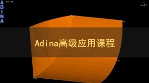 Adina高级应用课程...